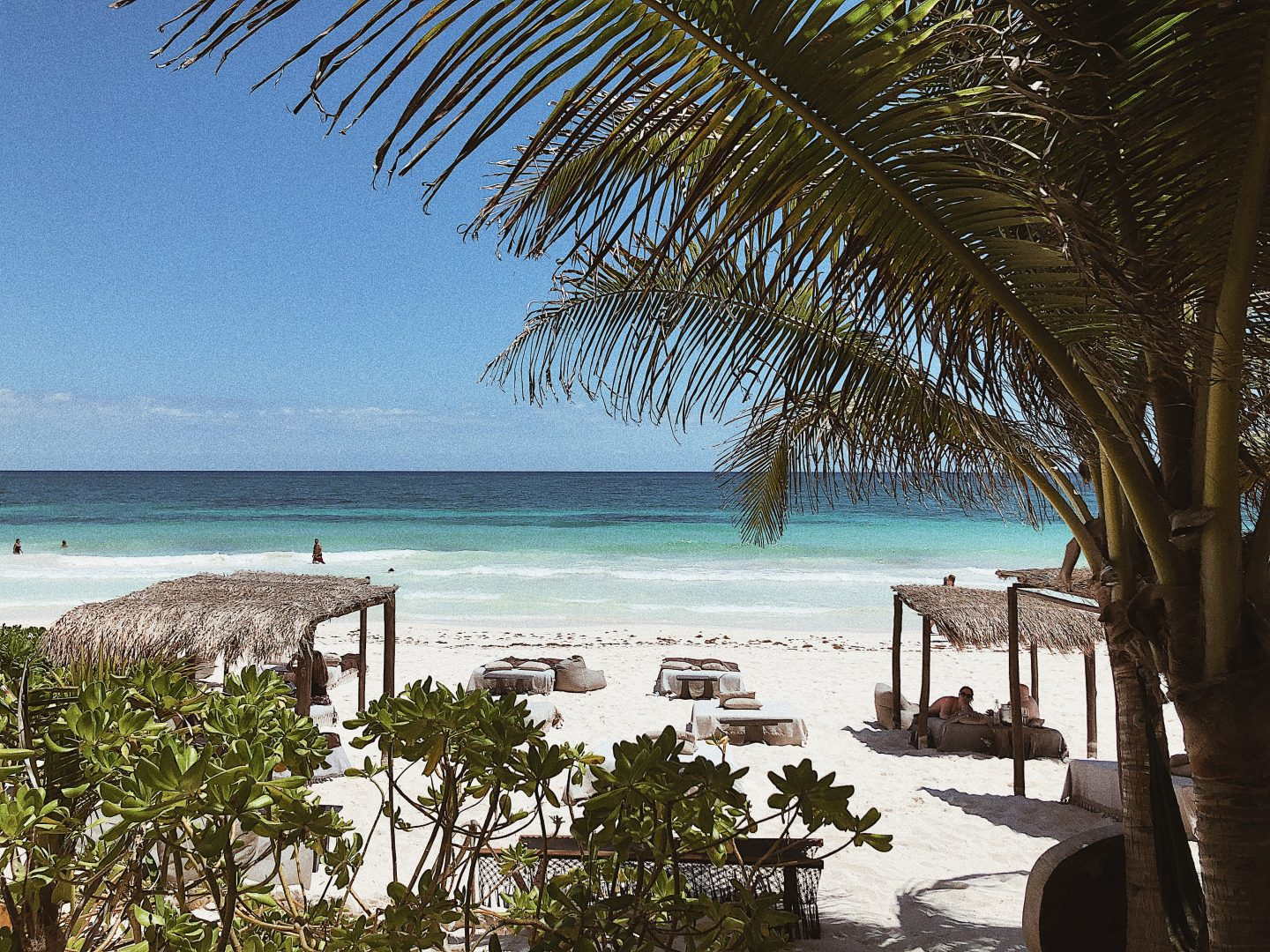 NEST Beach Club Tulum